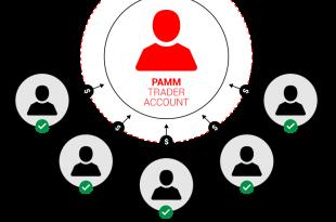 pamm graph 310x205 - حساب PAMM فارکس چیست؟
